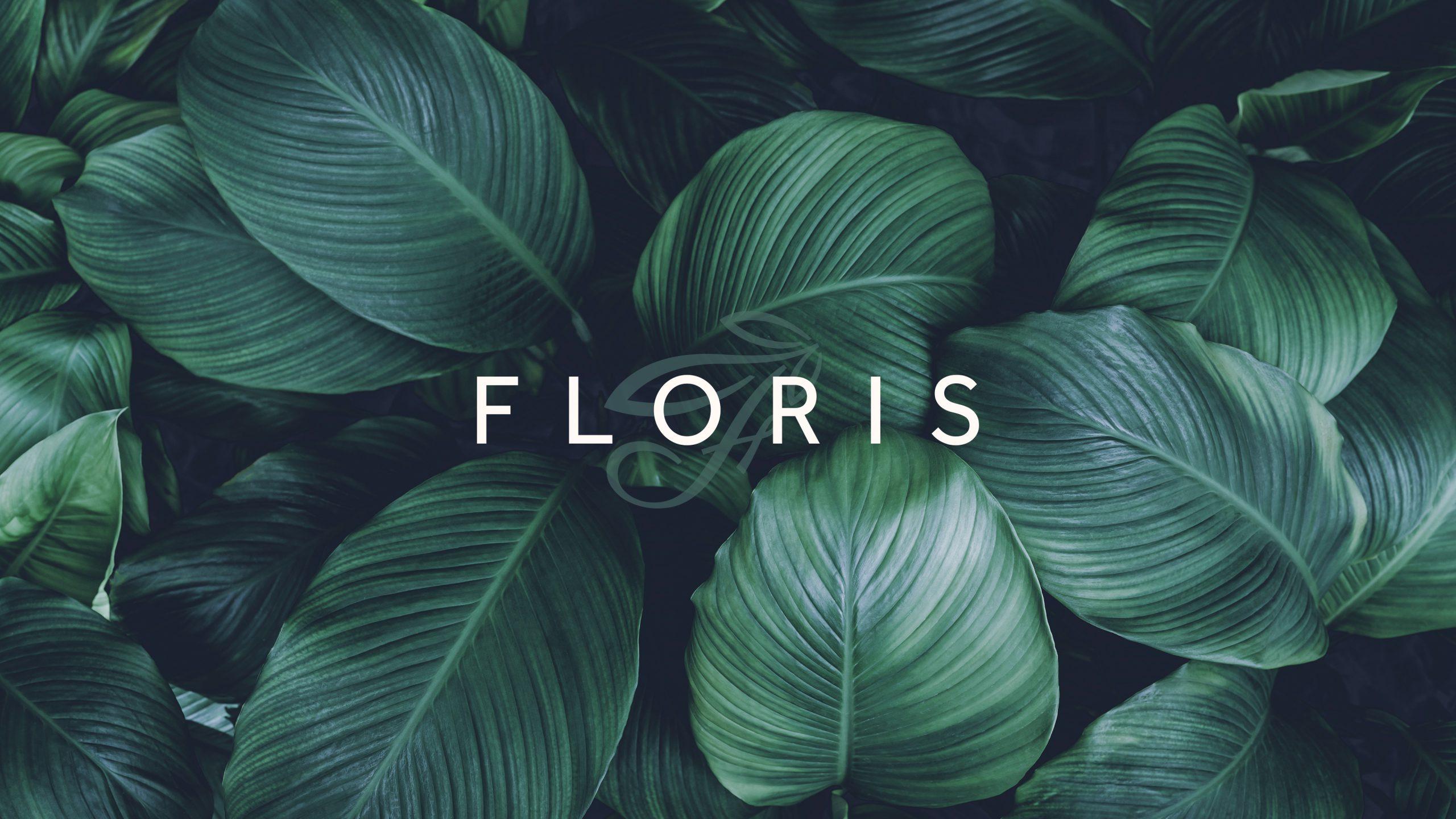 Corporate Design FLORIS
